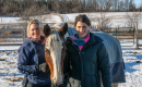 EQUINE ASSISTED PSYCHOTHERAPY AND LEARNING thumbnail image